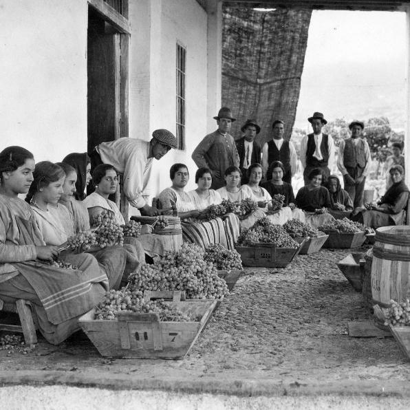 Cuatro generaciones de agricultores