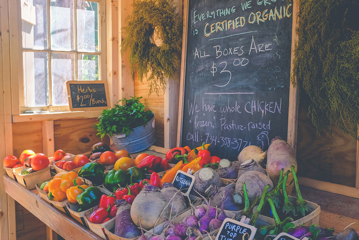 Beneficios de consumir frutas y hortalizas ecológicos