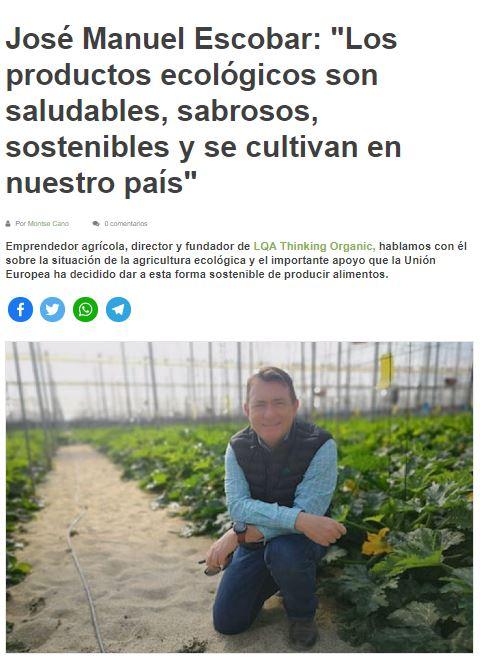 Pepinos y Calabacines ecológicos