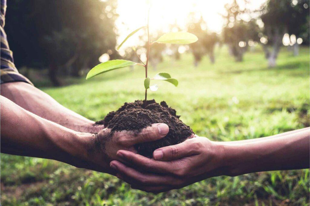 Ciencia y ecologismo son incompatibles